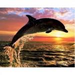 "Алмазная вышивка ""Дельфин на закате""50/40"